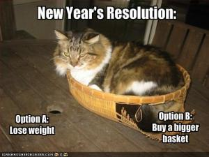 new year resolution lose weight buy bigger basket funny cat